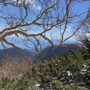 絶景の薬師岳山頂!!【 鳳凰山 】 日本百名山