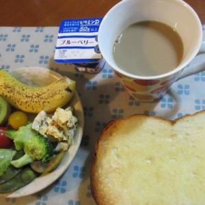 ムスカリとフリージアを植える!秋の長生き朝食ベスト20