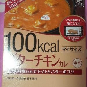 100均で100カロリー(大塚食品のレトルトカレー)