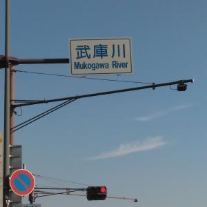 Mukogawa River