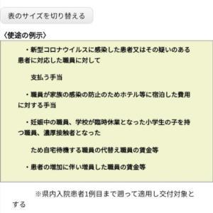 愛知県が独自の「医療従事者応援金」を創設