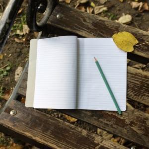 日記を捨てることで手放したもの(わたしが汚部屋から脱出するまで3)。