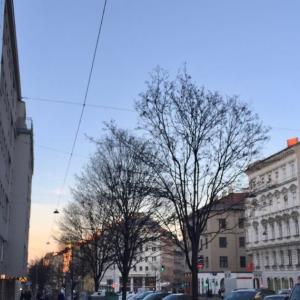 「戦後最大の危機」 オーストリア政府のコロナ対策とウィーンの様子