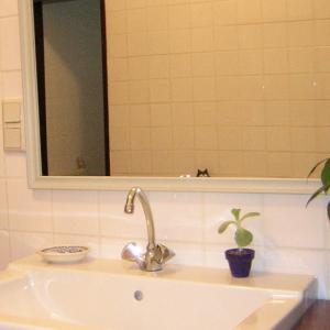 自宅は一番好きな場所。DIYリフォームで好みの空間にカスタマイズ。その1、バスルーム編