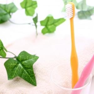 絶対おすすめ!最高の清涼感。しみない歯になる安全な歯磨き粉。