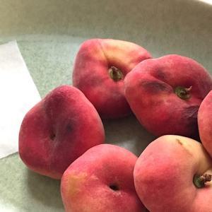 平たい桃「蟠桃」Saturnpfirsichが美味しい!タイガーナッツとヨーグルトで毎日食べるよ♫