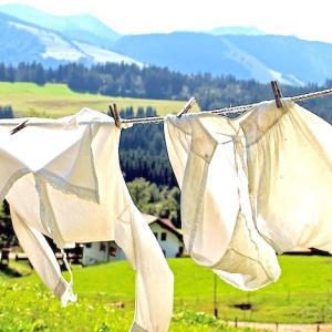 究極の節約!簡単!完全無料でアトピーやベビーにも安心なエコ洗濯・万能洗剤を作ろう!夏休み自由研究にもおすすめ。