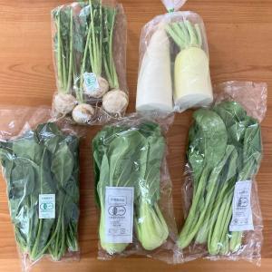 《パルシステム》まいにち有機野菜セット(2020年11月)葉物多め5品が届きました!