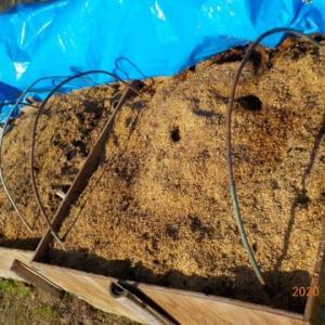 野菜残渣と雑草の処理をしました