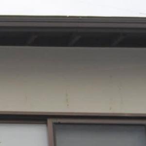 2階の壁に鳥の糞がいっぱい 防鳥糸を増やしました