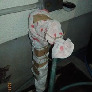 水道管の凍結防止を急遽しました