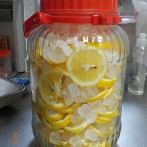 マイヤーレモンシロップ・ハチミツマイヤーレモン 保存しました