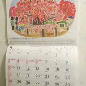 コメダカレンダー