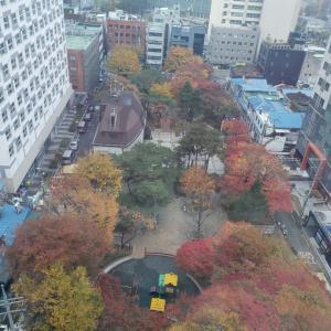 ソウルのホテルの窓から〜