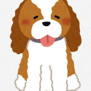 愛犬に会うまでは〜υ´• ﻌ •`υワン×⑤