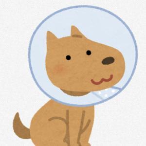 愛犬に会うまでは〜繁殖屋残酷話〜U/ェ・、U ワン×⑧