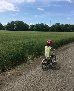 それぞれの練習(自転車と空手着)