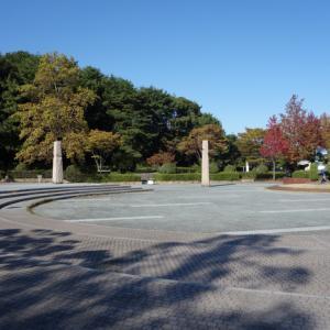文化記念公園まで2往復歩く 2019.11.05
