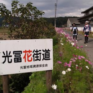今日のサイクリングは73km走った 2019.11.09