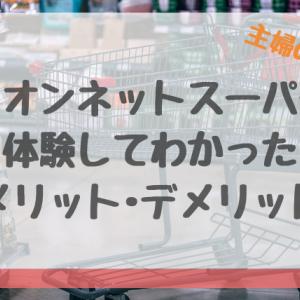 主婦の味方!【イオンネットスーパー】のメリットとデメリット