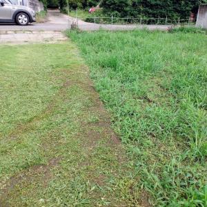 びしょ濡れになりながら草刈り