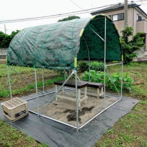屋根が付いた畑の日除け小屋