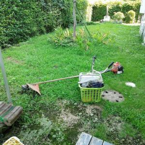 裏庭の草刈り