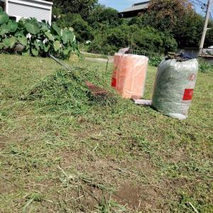 増設した草刈機で初仕事