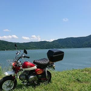 余呉湖紫陽花園