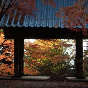 続昌禅寺の紅葉