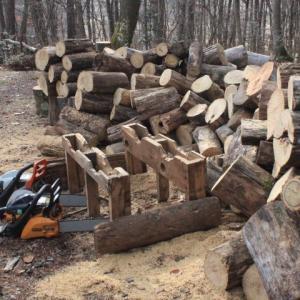 楽しい薪作りは続く