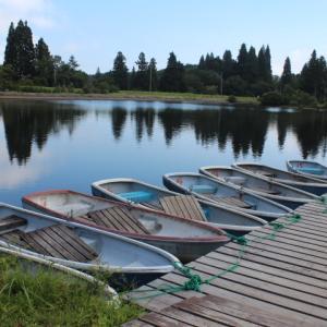 ミソハギ~希望湖