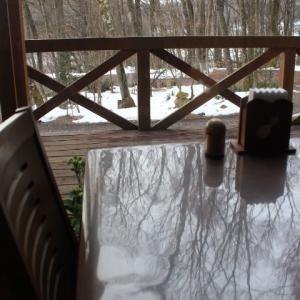 タマ棚の雪が消えた