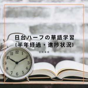 日台ハーフの華語学習(半年経過・進捗状況)