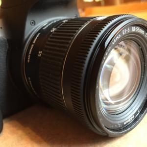 カメラを買うならキットレンズセットを絶対おすすめする理由【店員さんは教えてくれない】