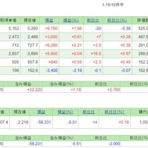 5/27~6/7の損益・PF(+8,112円)