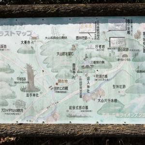 大乗寺(朱印巡礼39)