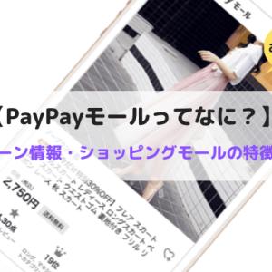 PayPayモールってなに?キャンペーン情報やショッピングモールの特徴を紹介!