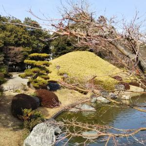 末っ子ちゃんとの日本庭園