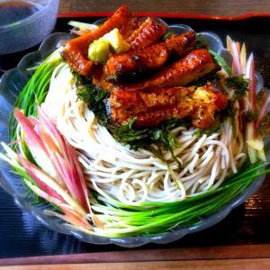 贅沢〜!薬味たっぷり〜芽ネギと鰻のぶっかけ蕎麦〜*レシピ