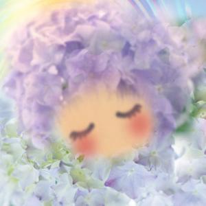雨に輝く花