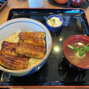 国産鰻がリーズナブル♪ 「鰻々亭」で、うな丼ランチ