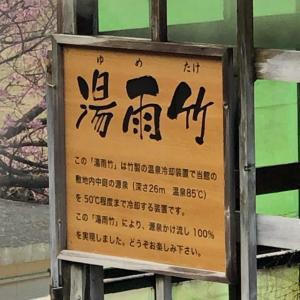 伊豆・下賀茂温泉 100%源泉かけ流しの湯宿「河内屋」で寛ぐ♪