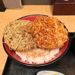 桜海老としらすの二色かき揚げ丼 熱海「季魚喜人(きときと)」でランチ