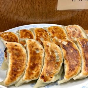 「横浜とんとん」で、美味しい餃子をお腹いっぱい食べました!