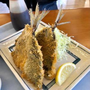保⽥漁協直営「ばんや」でランチ♪ あじフライやカサゴ煮やお刺身盛合せ