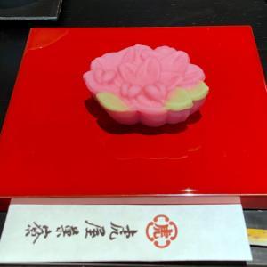 横浜 季節の生菓子 「虎屋菓寮」で、ひと休み♪