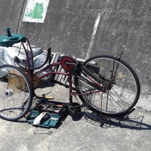 港の自転車も・・・・・