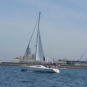 隣のヨット