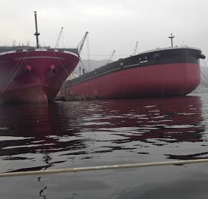 この船見たことがあります。
